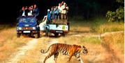 Jim Corbett Safari Booking