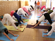 Avatar Yoga School Offers 200 Hours Hatha Yoga Teacher Training