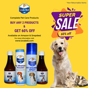 SPECIAL OFFER – Buy 2 and get discounts up to 60% on any Lova Bell's P